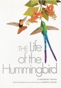 The Life of the Hummingbird