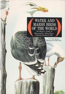 Marsh and Water Birds